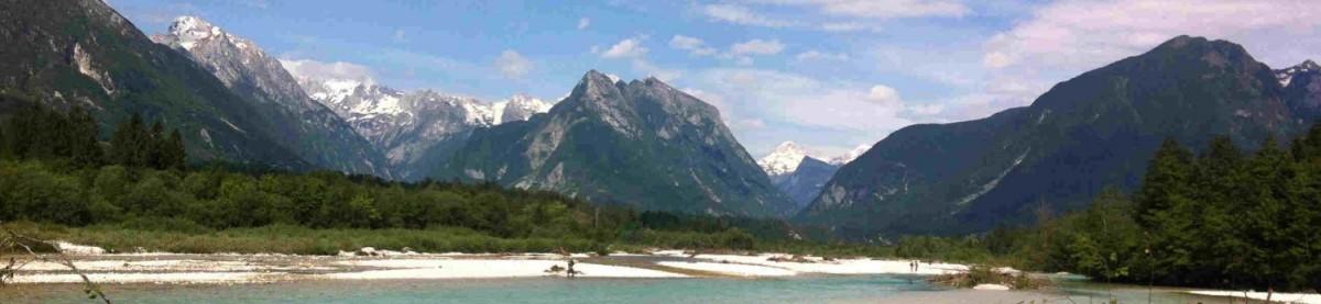 Pescado en la Red: Truchas marmoratas en ríos esmeraldas