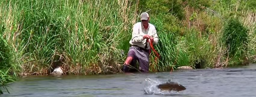 Pescado en la Red: Sky High Salmonfly by Todd Moen – Deschutes River FlyFishing