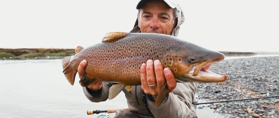 Pescado en la Red: SeaRun