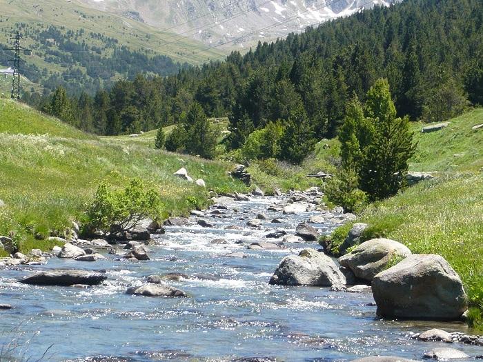 jornada de pesca en Ramsol-Andorra 3