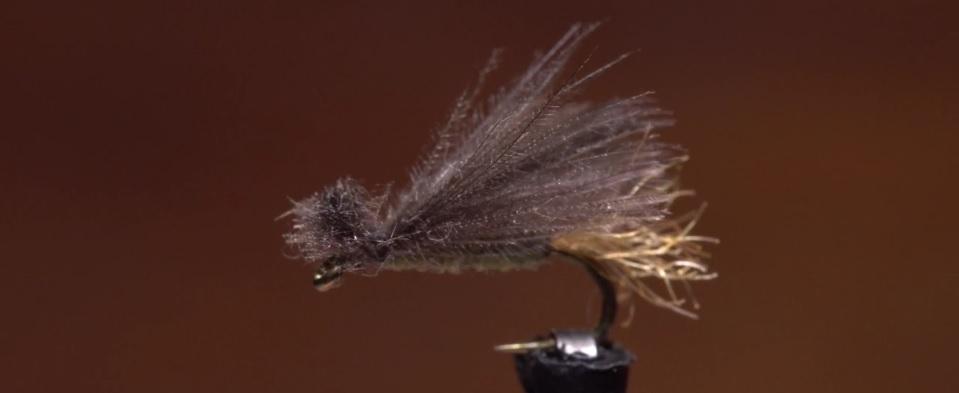 Pescado en la Red: Bighorn CDC X-Caddis4K