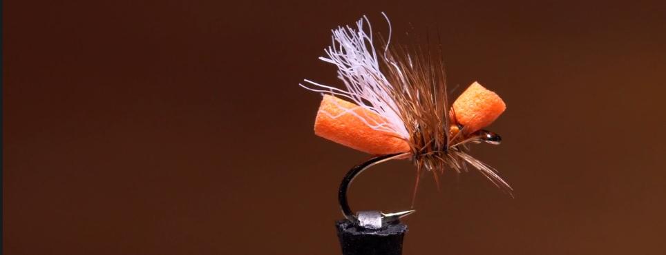 Pescado en la Red: Cinnamon Flying Ant4k