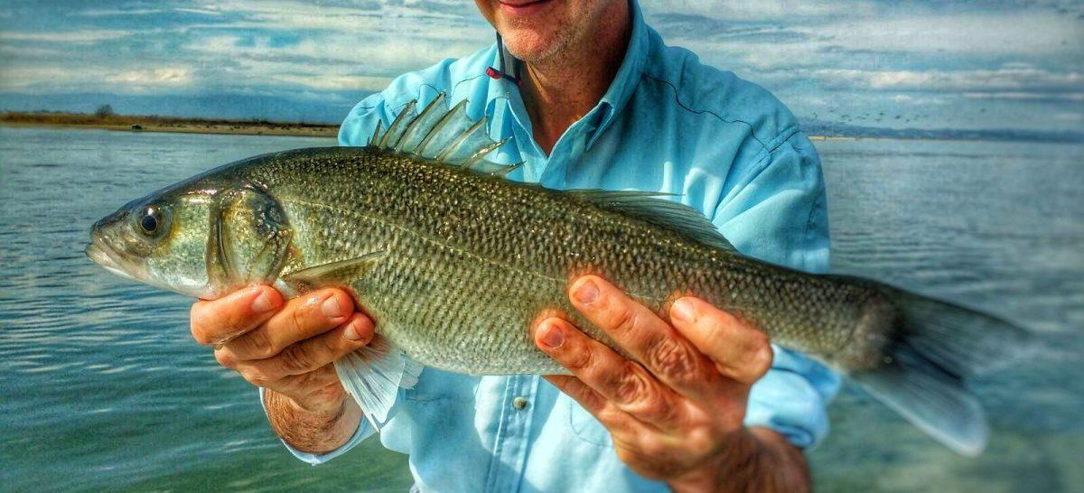 Pescar en el mar con éxito, es posible...!!