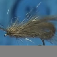 Vídeo: Tying the Tan CDC Bubble Caddis by Davie McPhail